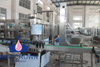 Automatic Metal Juice Capping Machine