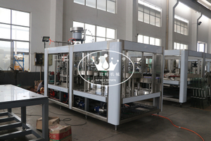 Monoblock 4 in 1 Craft Draft Beer Washing Filling Capping Machine with Double Time Washing for